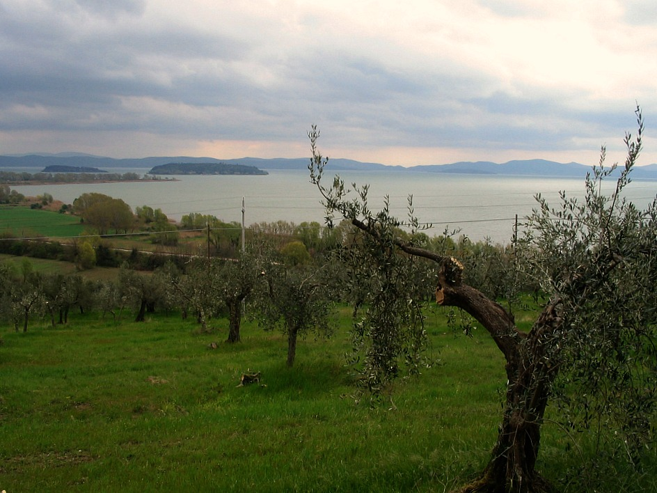 Site of the Battle of Trasimeno