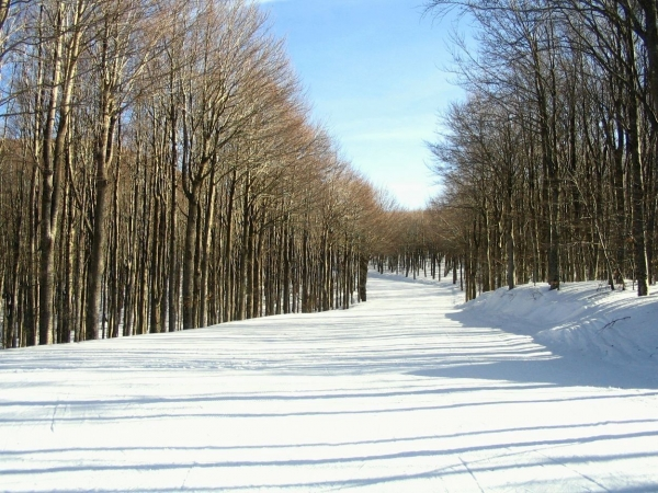 On the piste in Monte Amiata, Tuscany