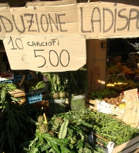 Artichokes of Ladispoli