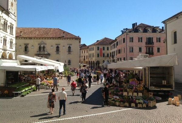 Market day in Belluno in Cathedral Square