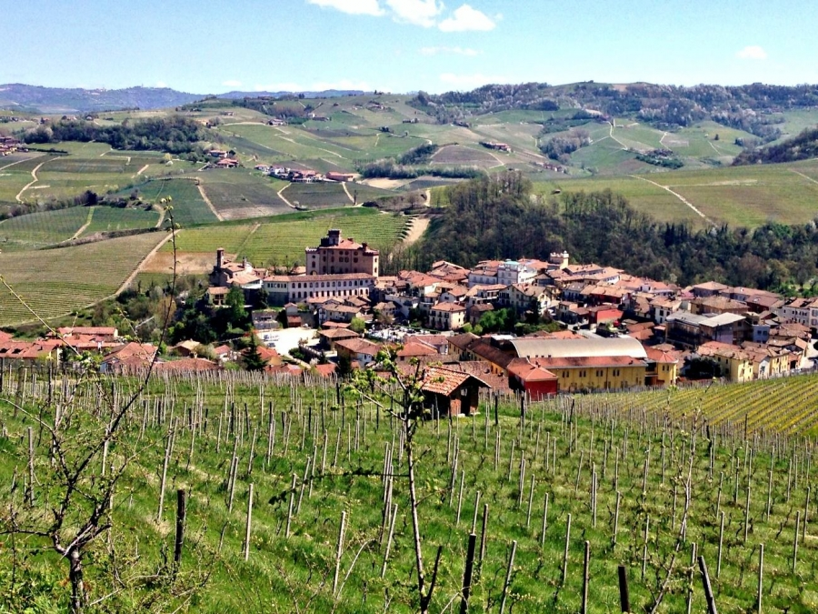 The Great Crus of Barolo
