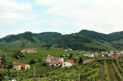 The prosecco wine making zone of Valdobbiadene
