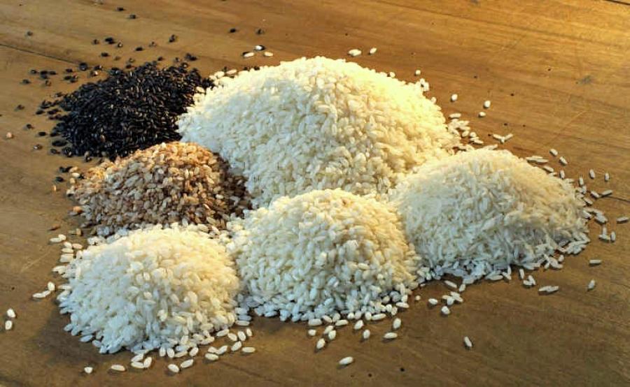 Paniscia rice recipe from novara delicious italy